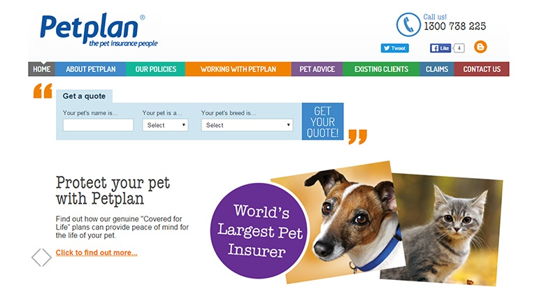 Software Development Portfolio - Petplan